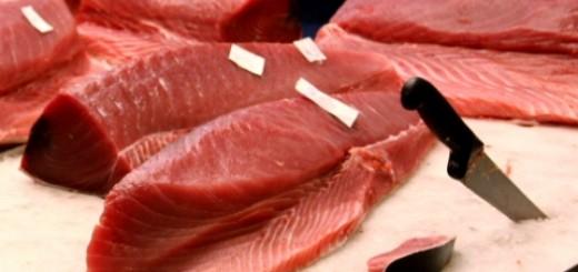 0-734996201-rawfish