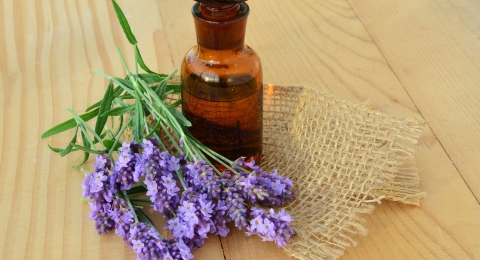 Invigorating Essential Oils
