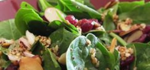 0-101673150-cranberry-spinach-salad2