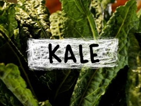 Kale – Superfoods
