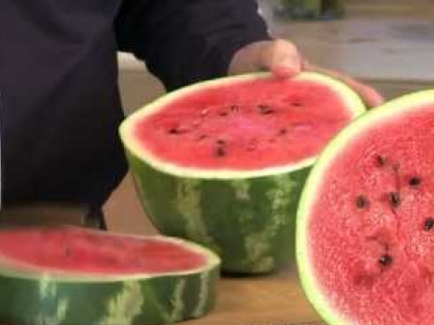 Jay Kordich Makes Watermelon Juice with PowerGrind Pro Juicer