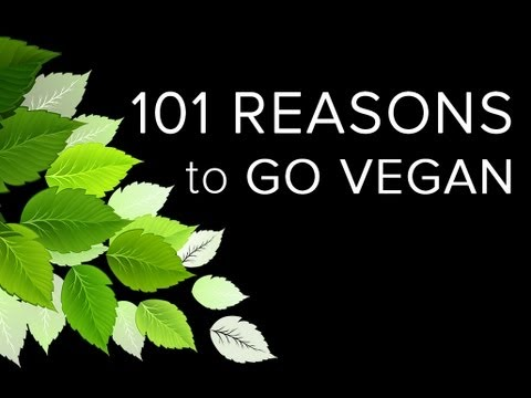 101 – Reasons to Go Vegan