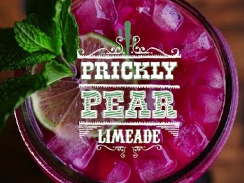 Prickly Pear Limeade
