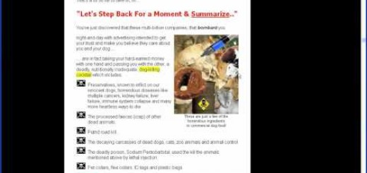 Dog Food Conspiracy Secrets With Andrew Lewis