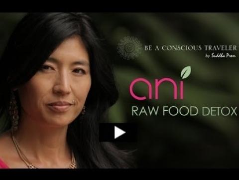 Ani Phyo Raw Food Detox