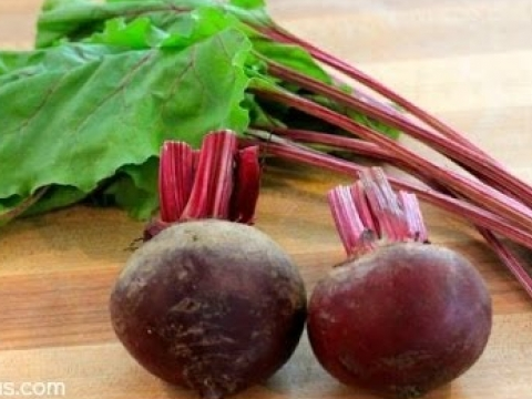 Beets 101 – Everything You Need To Know