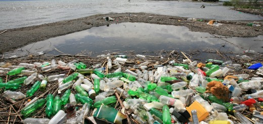 Americans Are Drinking 10 Billion Gallons of Bottled Water…Here's Where Those Plastic Bottles End Up