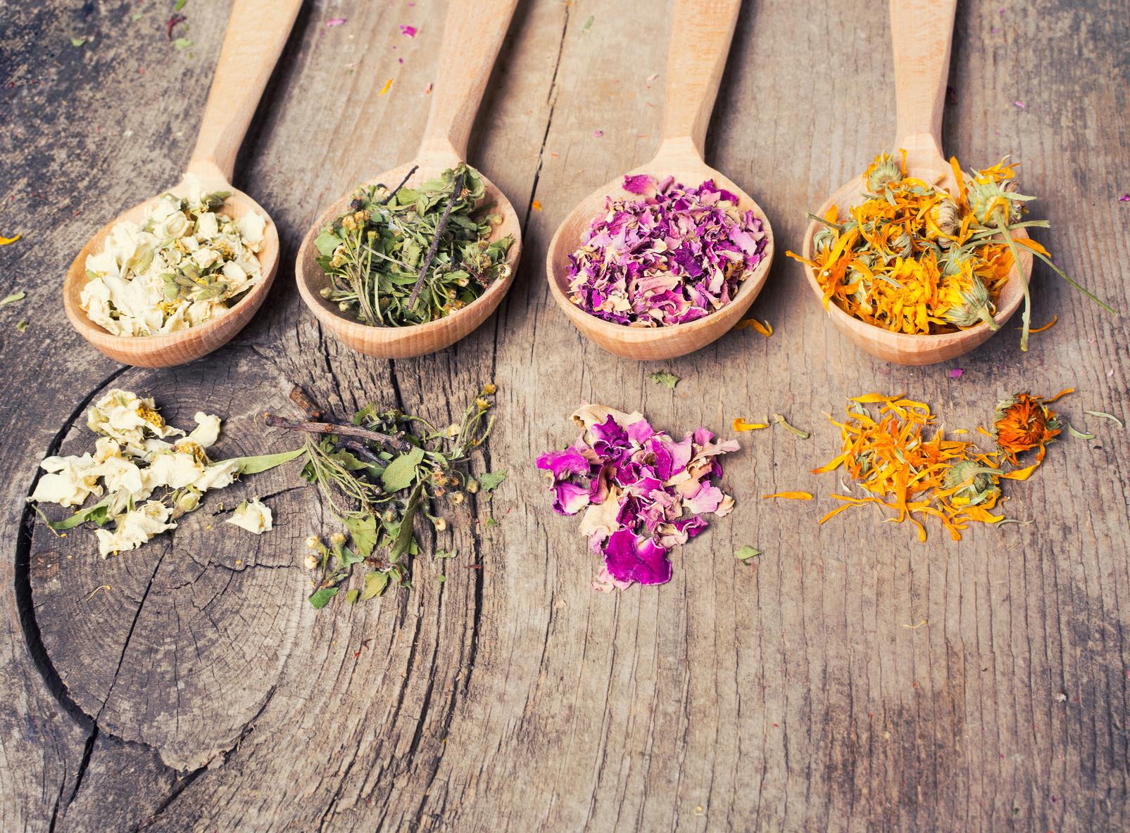 Herbal Relief: Women's Health