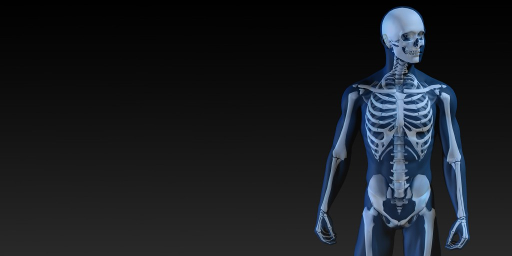 Human Bone Structure Diagram in Blue and Black