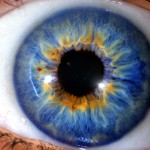 Eye See You: How Iridology is a Window into Your Health