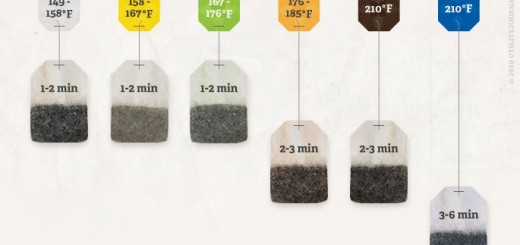 How to Brew Tea Infographic