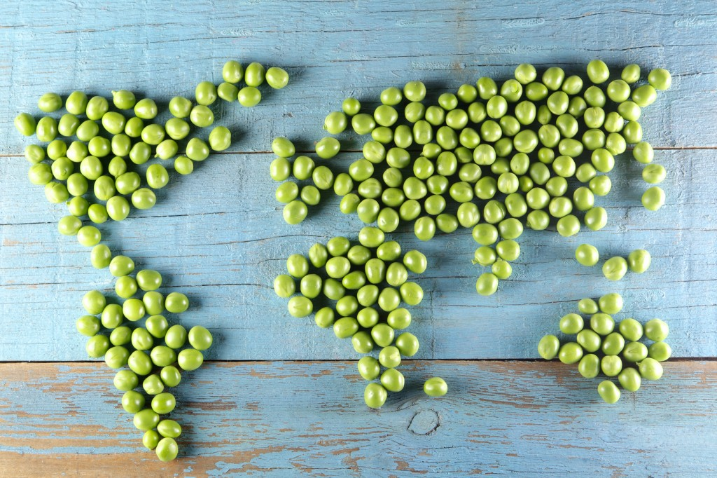 World Map Made from Peas