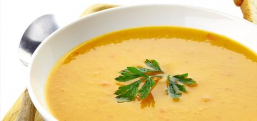 fibromyalgia-soup