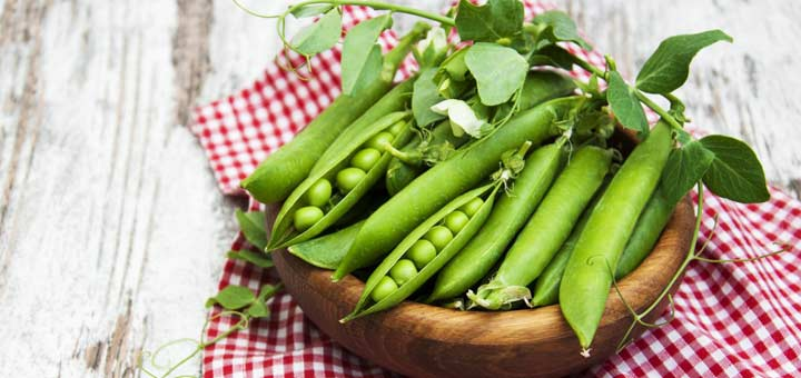 Why You Should Give Pea Protein a Chance
