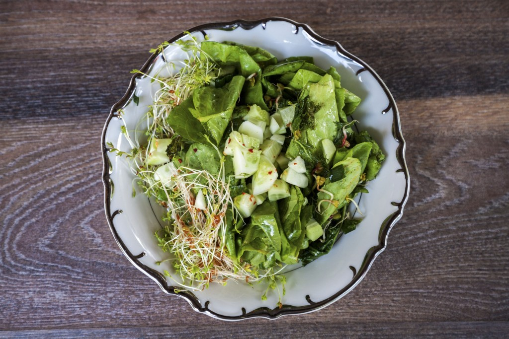 Green salad with sprouts and cucumbers