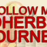 dherbs-journey-720x340-2