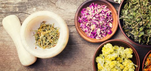 The 5 Medicinal Herbs that Will Give You Super Powers