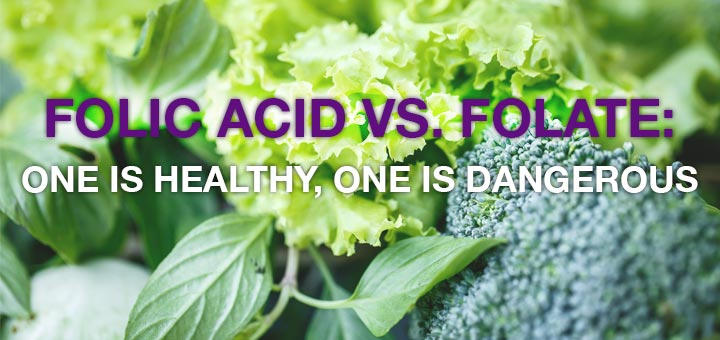 folate-vs-folic-acid