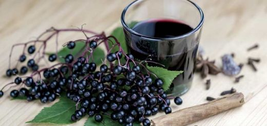 How To Make An Elderberry Syrup To Boost Immunity