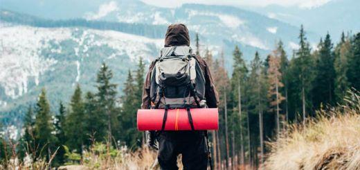 healthy-traveler
