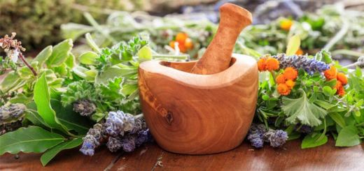 7 Foods That Strengthen The Immune System