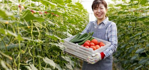 woman-holding-vegetables