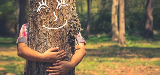 Release Your Inner Tree Hugger For National Love A Tree Day 2018