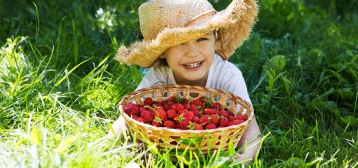 little-girl-strawberry-basket