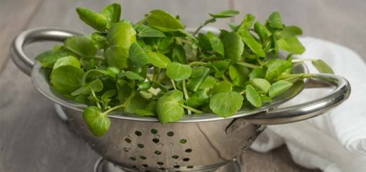 watercress-colander