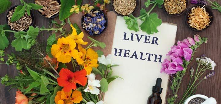 liver-health-herbs