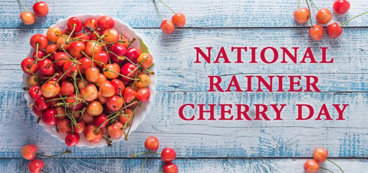 national-rainier-cherry-day