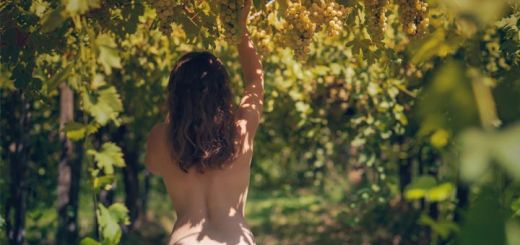 nude-woman-vineyard