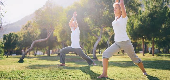 elderly-couple-yoga-park