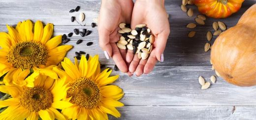 Small But Mighty: 5 Super Seeds You Should Eat