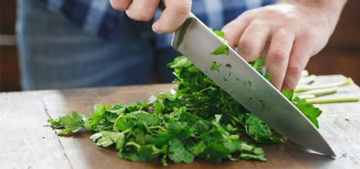 chopping-cilantro