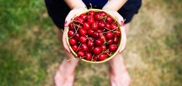 holding-basket-of-cherries