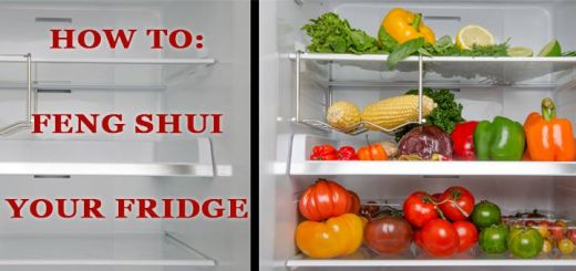 feng-shui-fridge