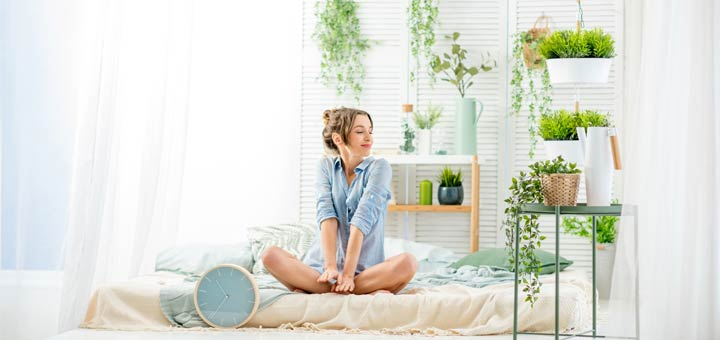 Bedroom Plants That Help To Improve Your Sleep
