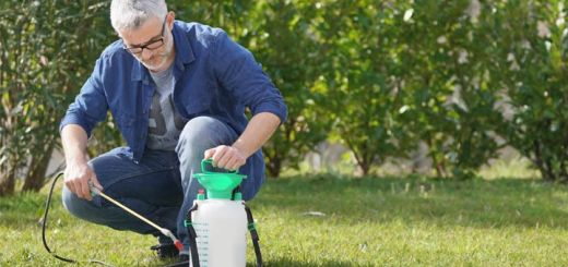 old-man-spraying-weed-killer