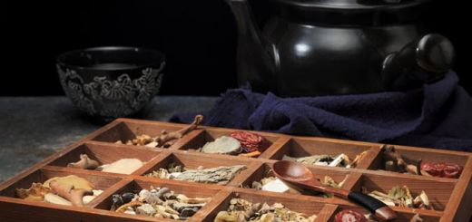 The Magical Health Properties Of Medicinal Mushrooms