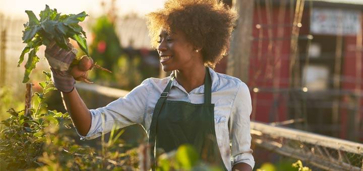 farmer-woman-holding-beets