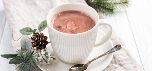 Dairy-Free Raw Vegan Hot Chocolate