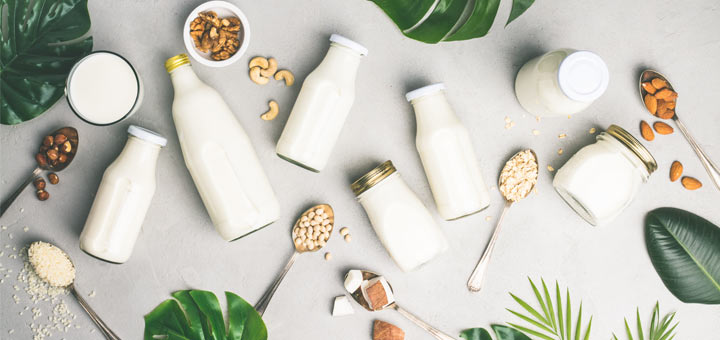 Dairy Alternatives To Substitute Common Dairy Products