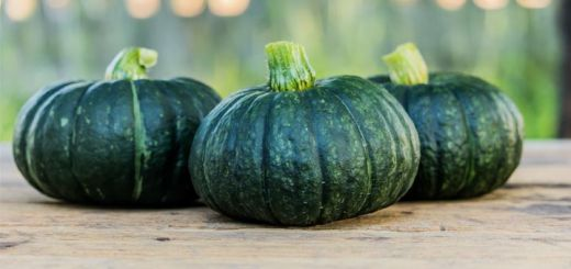 4 Reasons We Love Kabocha Squash