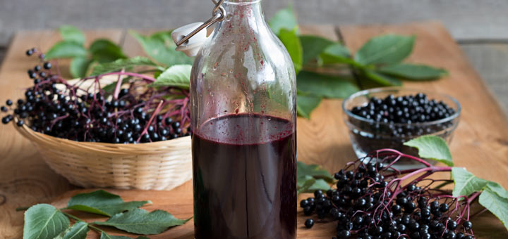 Instant Pot Elderberry Syrup To Boost Immunity