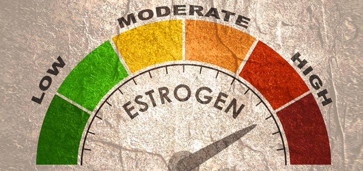 How to Treat Estrogen Dominance in Men and Women