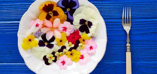 6 Edible Flowers With Amazing Nutritional Value