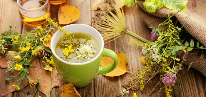 The Top 7 Herbs And Spices For Brain Health