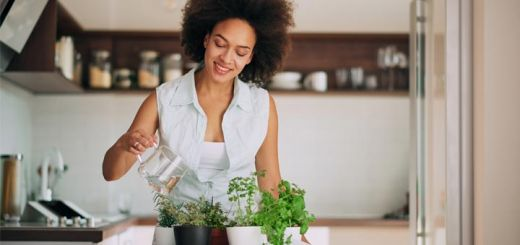 5 Herbs Every Woman Should Know About