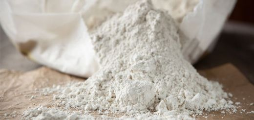 5 Benefits And Proven Uses Of Diatomaceous Earth